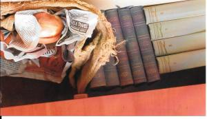 Onions hidden among books.